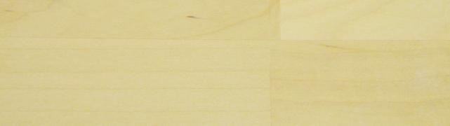 Hvid birk
